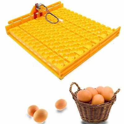 220 Volt Motor Yellow Automatic Incubator 154 Quail Bird Eggs Tray For Poultry