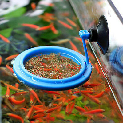 Fish Feeding Tools Aquarium Fish Tank Ring Feeder Floating Food Circle Feeder
