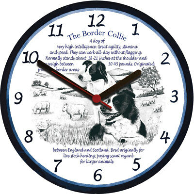 Border Collie  - Large Wall Clock - Dog Breed Origins Animal Facts