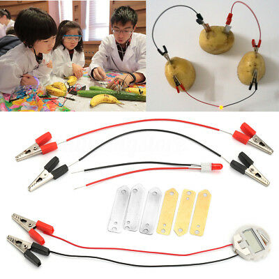 Bio Energy Science Kit Children Educational Fun Potato Electricity Experiments