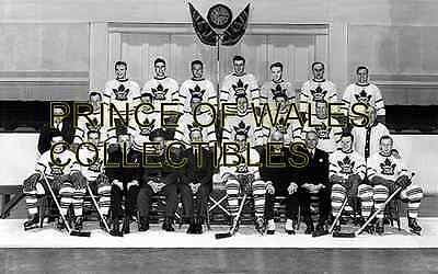 1943 Toronto Maple Leafs Team Photo 8X10