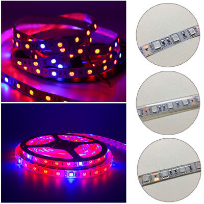 LED Grow Light Strip DC 12V Growing LED Strip 5050 For Plant Growth Lamp Kit