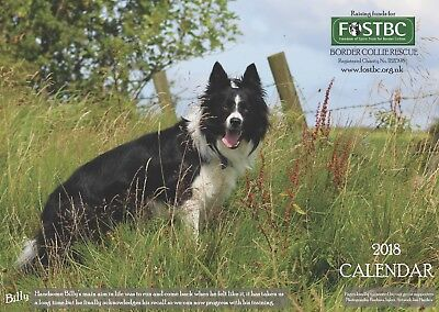 2018 Calendar for FOSTBC Border Collie Dog Rescue Charity