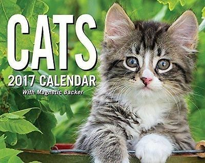 2017 Cat Calendar Desk Box Kitten Pictures Quotes Mini Andrew McMeel Trivia New