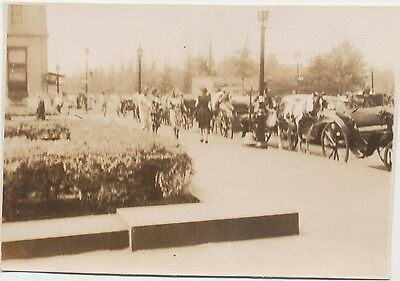 ANTIQUE Cars Vintage Original Real Photo Horses & Buggies Town Street View