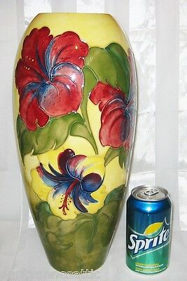 "Moorcroft - Hibiscus on Yellow - Tall  Vase 14 3/4"" - 1st Quality"