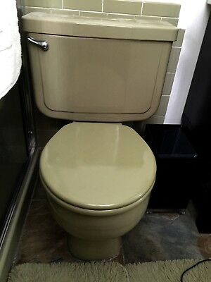 Vintage Mid-Century Avocado Colored Toilet - Totally Renovated
