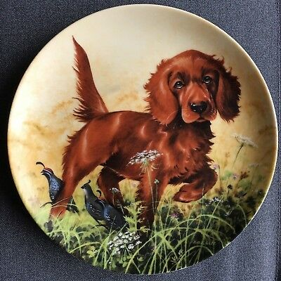 Knowles 1988 Field Puppies Missing the Point Irish Setter Collector Plate Kaatz