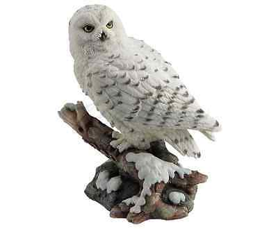 Snow Owl Perching On Branch Statue Sculpture Figurine - GIFT BOXED