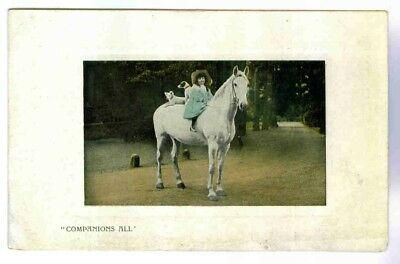 White Horse With Pretty Little Girl & Her Two Dogs On Horseback , Rppc, C.1910
