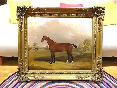 Fine Large 19th Century Bay Hunter Horse Portrait & Trainer Antique Oil Painting