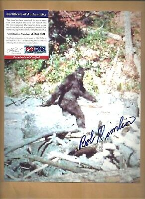 "PSA/DNA Bob Gimlin ""Patterson Gimlin Bigfoot Film"" Autographed 8x10 Picture"
