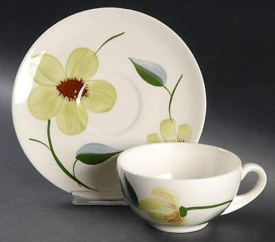 Blue Ridge Southern Pottery GREEN EYES Cup & Saucer 40447