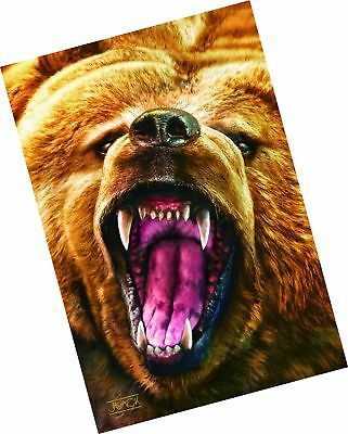 Gift Trenz Grizzly Growl 3D Postcard (20304)