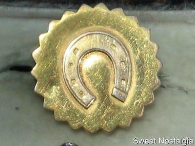 Beautiful Antique 15Ct Gold Victorian Edwardian Keepsake Photo Horseshoe Brooch
