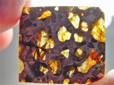 Museum Quality! Amazing Crystals! Beautiful Brahin Pallasite Meteorite 12.7 Gms