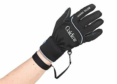 Caldene Waterproof Glove CG003