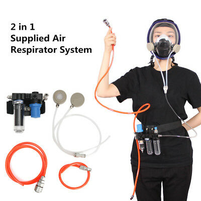 2 In 1 Air Fed Respirator System For Painting Spraying Gas Mask Respirator AU