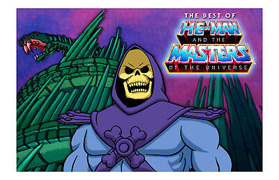 He-Man Masters Of The Universe Skeletor Poster 11x17 in / 28x43 cm Cartoon