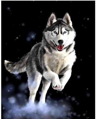 "Diamond Painting - Diamant Malerei - Stickerei - ""Husky"" Set - Neu (890)"