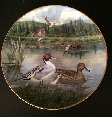 The Pintail-1986 Knowles Limited Edition Collector's Plate By Barton Jerner