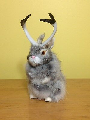 Realistic JACKALOPE RABBIT Fur FURRY ANIMAL REPLICA toy 1800gy FREE SHIPPING USA