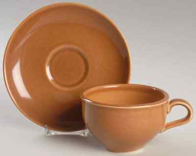 Iroquois CASUAL APRICOT Cup & Saucer 6301992