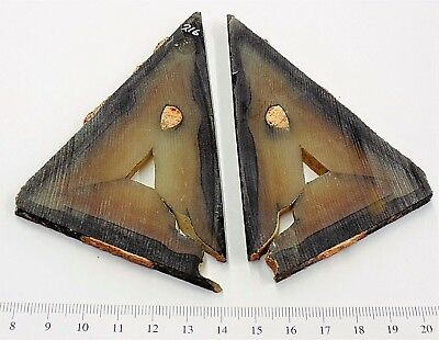 ULTRA RARE Polyhedroid Agate Matched PAIR  Museum Quality        Flat 2