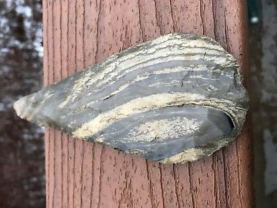 FINE Mayan Axe / Blade Thin Striped Flint   AUTHENTIC Pre-Columbian