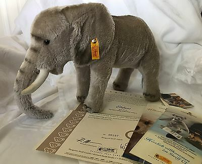 2006 Steiff 037009 - Limited Edition 197/2006 Mohair Elephant. Box & certificate