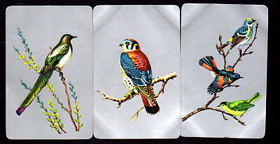 Vintage Swap/Playing Cards - Lovely Birds on Silver x 3