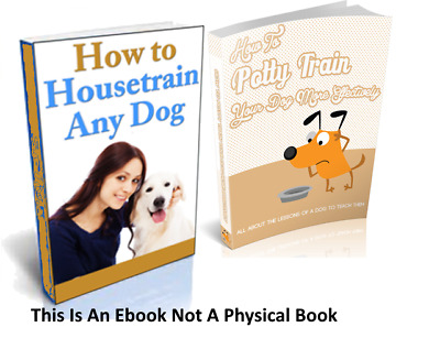 How To House Train Any Dog And How To Potty Train Your Dog More Effectively