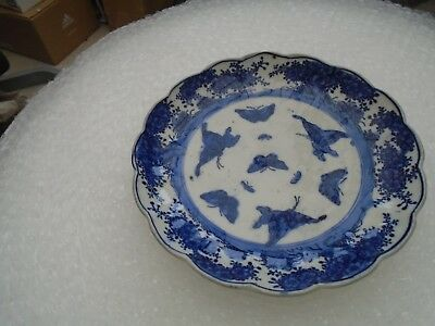 lovely early blue & white dish with amazing butterflies pattern   clearance find