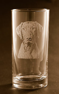 New! Etched Weimaraner on Highball / Tumbler Glasses