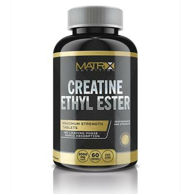 Creatine Ethyl Ester - Muscle Gain - Increase Atp 240 Tablets - Matrix Nutrition