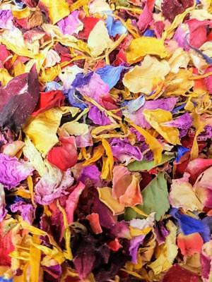 Rainbow Real Petal Biodegradable Wedding Confetti 1 Litre 12 Guests