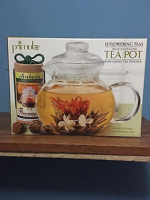 Primula 40-Ounce Glass Teapot with Infuser and Lid with 12 Flowering Teas