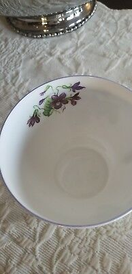 Shelley Cup Violets Pattern in Ovide, Breakfast, Grandfather Shape