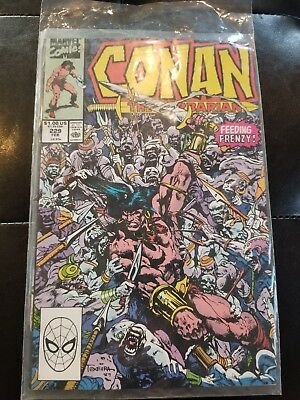 Conan the Barbarian (Marvel) #229 comic book in protective sleeve