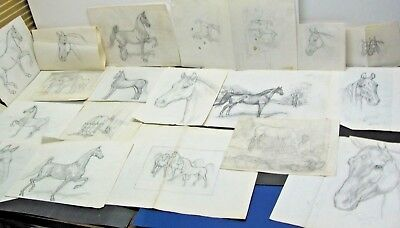 Vintage Lot Box of Shary B. Akers HORSE SKETCHES DRAWINGS No.2 Lot of 20