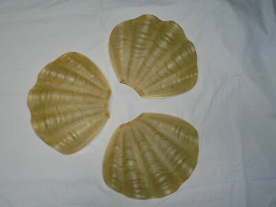 VINTAGE 1930'S ART DECO ODEON GLASS CLAM SHELL REPLACEMENT GLASS (Set of 3)