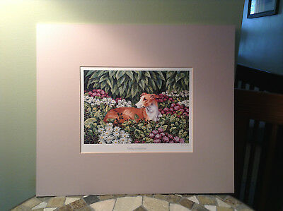 Whippet Italian Greyhound Color Print Red & White Dog Matted Stunning