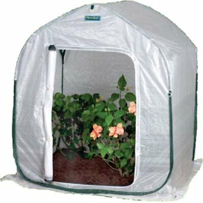 Flower House PlantHouse 2-foot Pop-Up Garden Plant Protection Lawn Greenhouse US