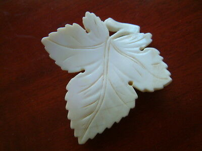 Vintage Antique Old Victorian Huge Carved Angel Skin Coral Shell Leaf