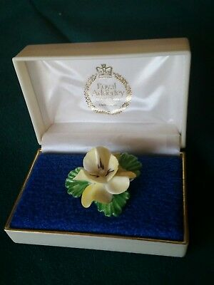 Bone China Flower Pin Brooch Royal Adderley Floral Made in England in Orig Case