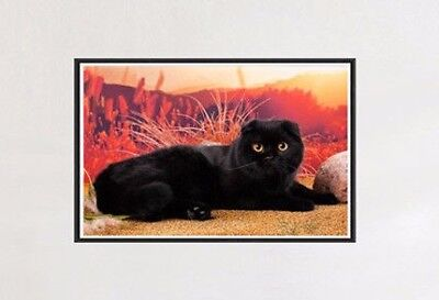 "Diamond Painting - Diamant Malerei - Stickerei - ""Panther"" Set - Neu (805)"