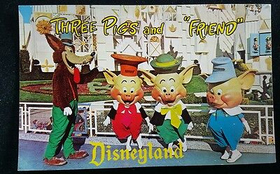 Postcard Disneyland The Three Little Pigs And The Wolf Singing In Fantasyland