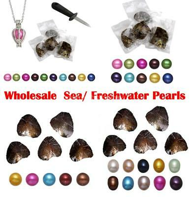 10X Akoya Cultured Pearls Sea Mussel Freshwater Pearl Oyster Mixed Color