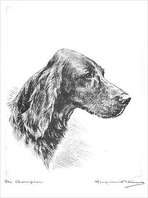 Irish Terrier Dog 1925 Marguerite Kirmse  8 LARGE New Blank Note Cards