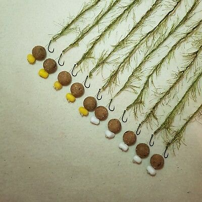 10 x WEED EFFECT HAIR RIGS LOADED WITH 15MM TIGER NUT BOILIES FLYNSCOTMAN